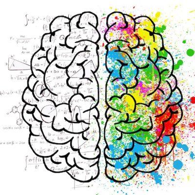 Hjernens evinnelige rop om status quo